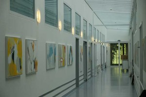 Ausstellung_Barmelweid_2013-(13)