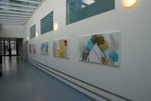 Ausstellung_Barmelweid_2013-(22)