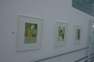 Ausstellung_Barmelweid_2013-(4)