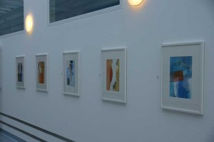 Ausstellung_Barmelweid_2013-(5)